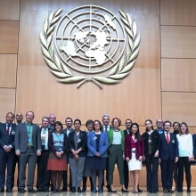UNECE Group of Experts